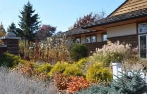 Town & Country Garden